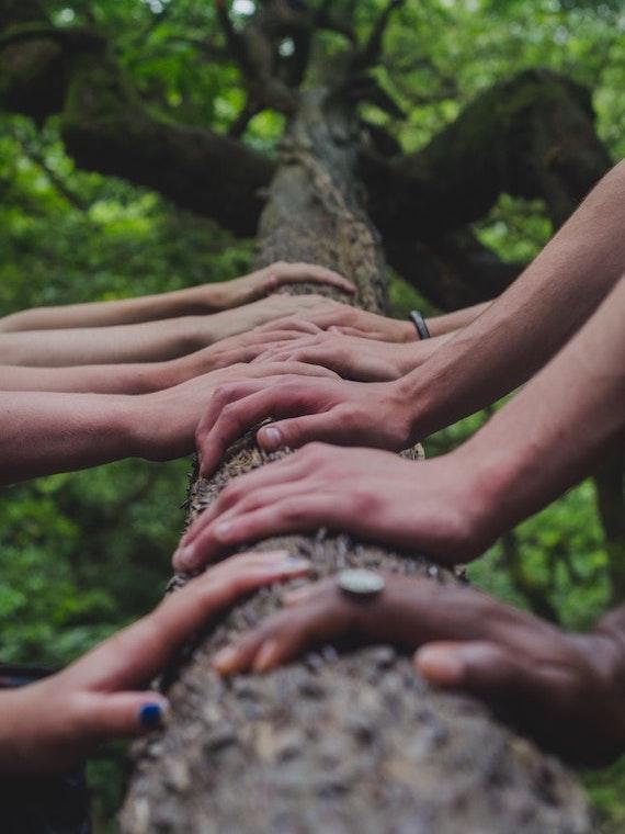 Image showcasing church company teamwork